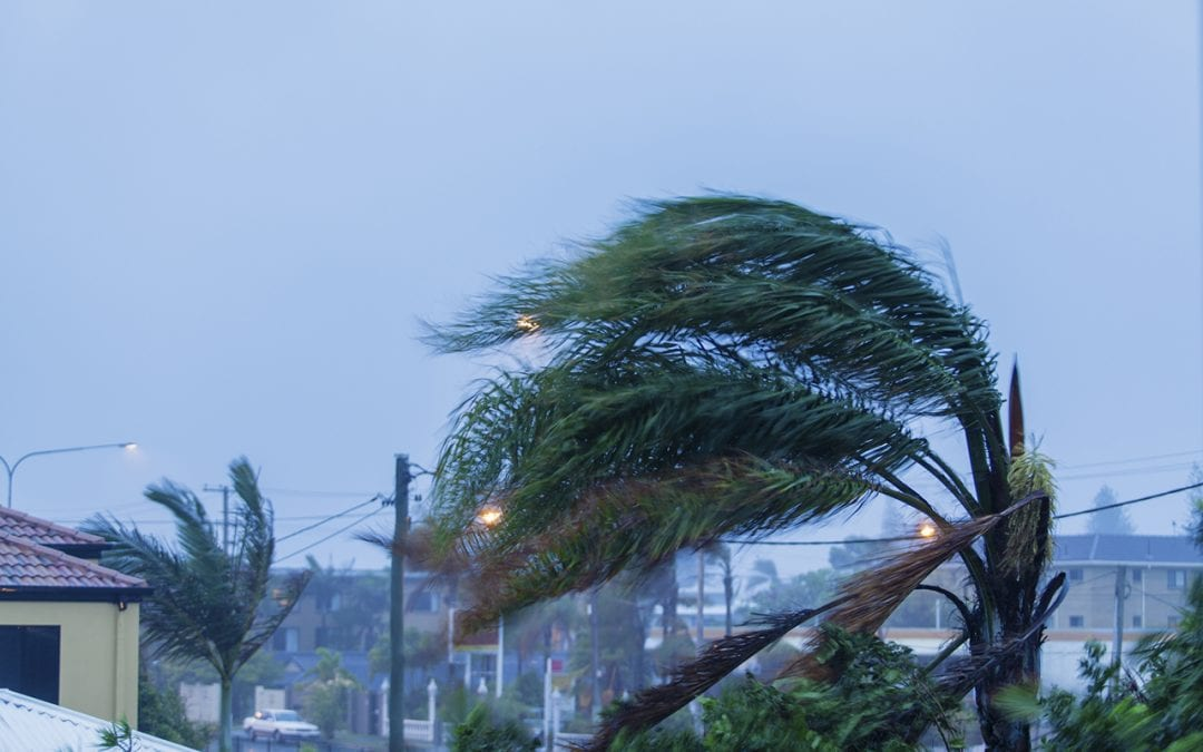 5 Ways to Protect Your Home from Wind Damage