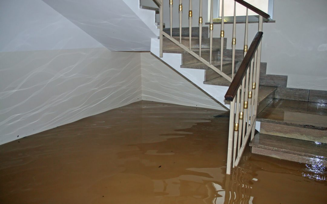 4 Steps to Deal with Residential Water Damage